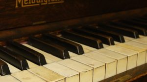 Nature affecting piano keys